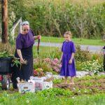 Komunitas Amish dan Diskriminasi